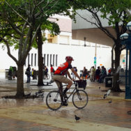 bicycle-pigeons-people-plaza-government-center-Miami-MelanieinMiami