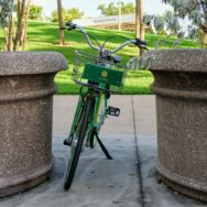 A green bicycle parked between two very large planters in Chopin Plaza next to Bayfront Park
